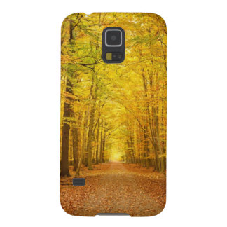 Pathway in the autumn forest case for galaxy s5