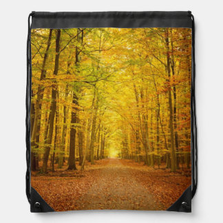 Pathway in the autumn forest drawstring bag