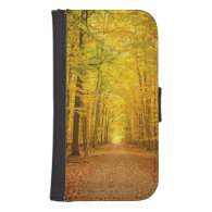 Pathway in the autumn forest galaxy s4 wallet