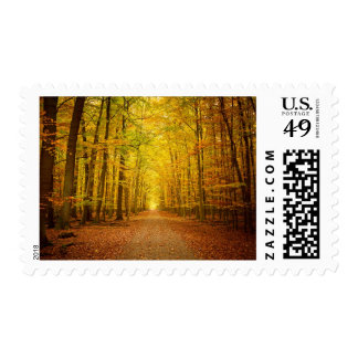 Pathway in the autumn forest postage stamp