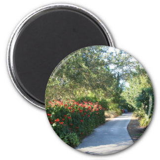 Pathway Magnet