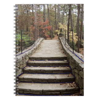 Pathway Notebook