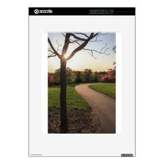 Pathway Skins For iPad