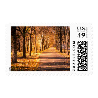 Pathway Through The Autumn Forest Postage