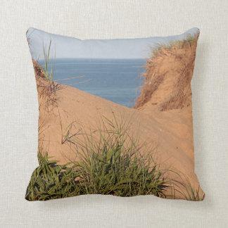 Pathway through the dunes throw pillow