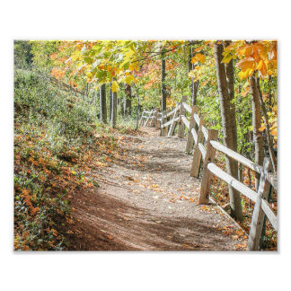 Pathway to Autumn Photo Print