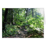 pathway to light greeting card