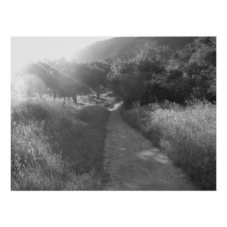 Pathway to Light Poster