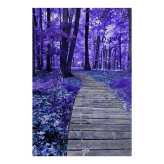 Pathway to the Fae Poster