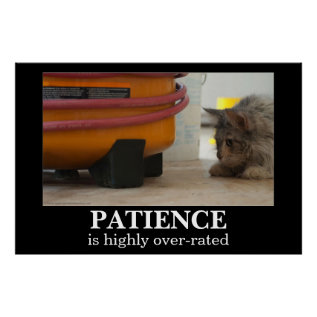 Patience Cat And Mouse Demotivational Poster at Zazzle