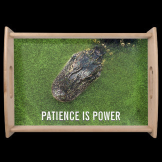 Patience is Power • Florida Alligator • Photo Serving Tray