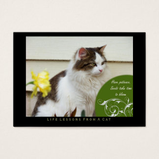 Patience Life Lessons From A Cat ACEO Art Cards