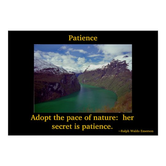 Patience of Nature Poster