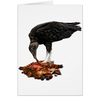 Patience Pays... Scavenger Eating Road Kill! Greeting Card