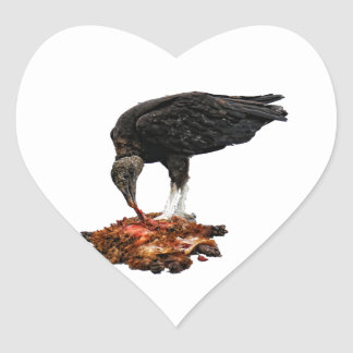 Patience Pays... Scavenger Eating Road Kill! Heart Sticker