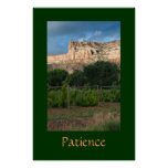 Patience Posters