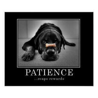 """""""Patience Reaps Rewards"""" Posters"""