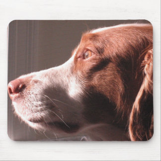 Patient Brittany Mouse Pad