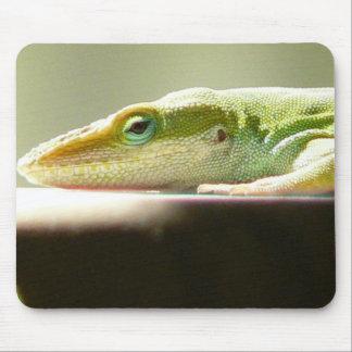 Patient Lizard Mouse Pad
