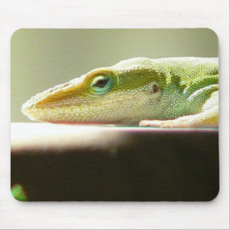 Patient Lizard Mousepad