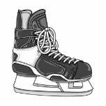 Patín del hockey escultura fotografica