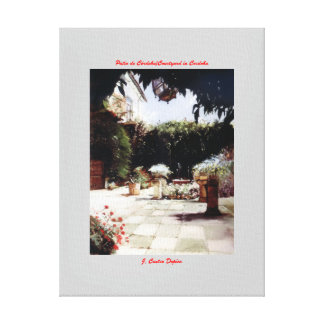 Patio of Cordoba/Courtyard in Cordoba Canvas Print