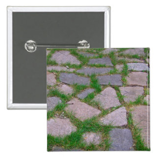Patio stones pretty stone mosaic natural rocks buttons