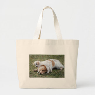 "Pato and Precious Poodle Pup ""Patience"" Canvas Bag"