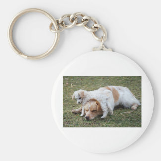 """Pato and Precious Poodle Pup """"Patience"""" Keychain"""