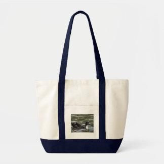Pato azul sueco con el anadón bolsa