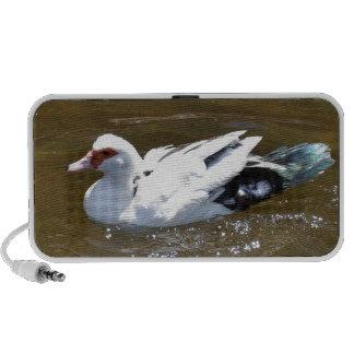Pato blanco laptop altavoz