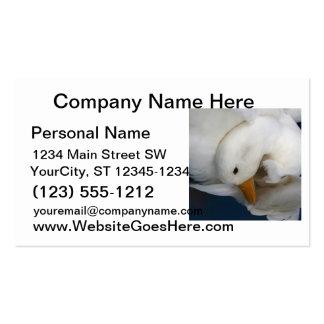Pato blanco de Pekin con la cabeza remetida bajo i Tarjetas De Visita