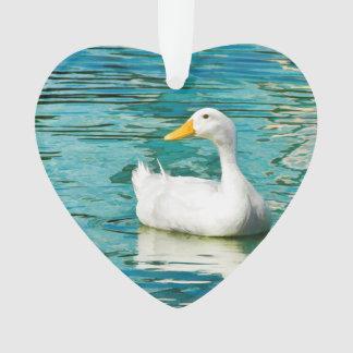 Pato blanco de Pekin - foto de la naturaleza en