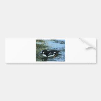 pato blanco y negro pegatina para auto