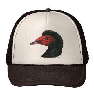 Pato:  Cabeza de Muscovy Gorro