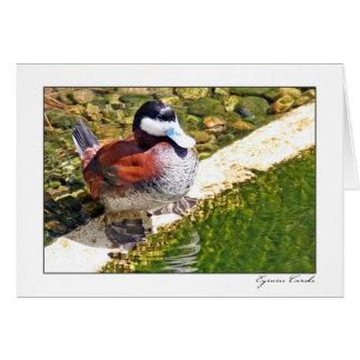 Pato cargado en cuenta azul tarjeta de felicitación