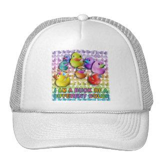 Pato casquillos y de los gorras de diversos de un