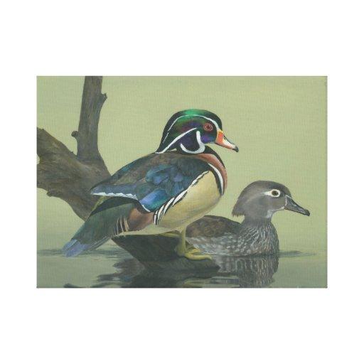 Pato colorido lienzo envuelto para galerías