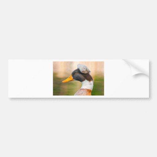 Pato con el Mohawk Pegatina Para Auto