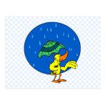 Pato de Dundle Tarjetas Postales