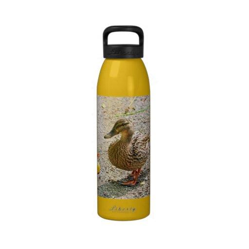 Pato de goma y pato de la madre botella de agua