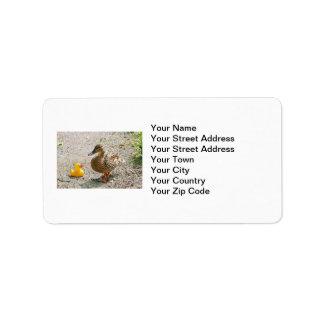 Pato de goma y pato de la madre etiquetas de dirección