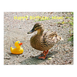 Pato de goma y pato de la madre tarjeta postal