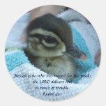 Pato de madera del bebé etiqueta redonda