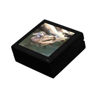 Pato de madera femenino caja de joyas