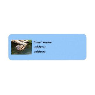 Pato de madera femenino etiquetas de remite