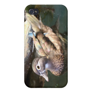 Pato de madera femenino iPhone 4 cárcasa