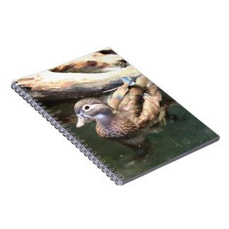 Pato de madera femenino libros de apuntes con espiral