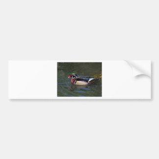 Pato de madera masculino colorido - sponsa del Aix Pegatina Para Auto