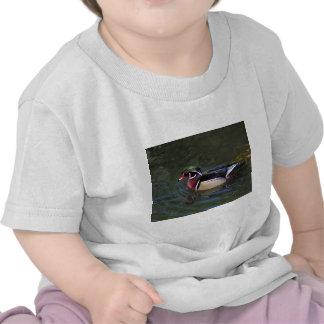 Pato de madera masculino colorido - sponsa del Aix Camiseta